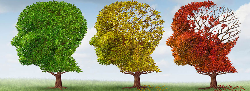 NEURO-BIO ATTRACTS OVER $3 MILLION IN SERIES A INVESTMENT TO DEVELOP A NEW APPROACH TO ALZHEIMER'S DISEASE