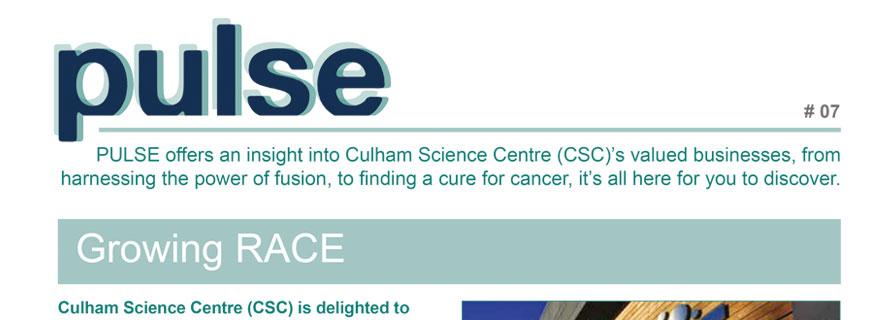 Pulse Newsletter #7